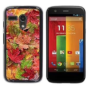 TopCaseStore / la caja del caucho duro de la cubierta de protección de la piel - Rain Autumn Pastel Colorful - Motorola Moto G 1 1ST Gen I X1032