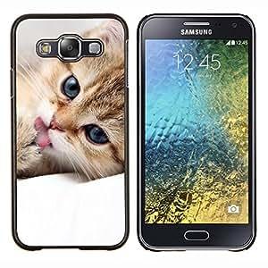 Cubierta protectora del caso de Shell Plástico || Samsung Galaxy E5 E500 || Maine Coon gatito lindo felino mascotas @XPTECH