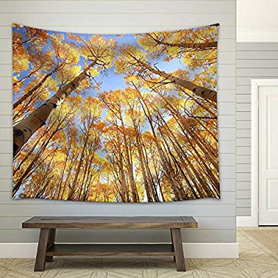 Crafted to Perfection, Wonderful Artisanship, Aspen Trees with Fall Color San Juan National Forest Colorado USA Fabric Wall