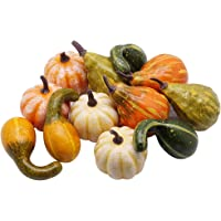 YOFIT 12 pcs Artificial Pumpkin Decoration, Fake Christmas Mini Pumpkins, Lifelike Simulation Foam Mini Pumpkins Set Thanksgiving Decorations (Colour)