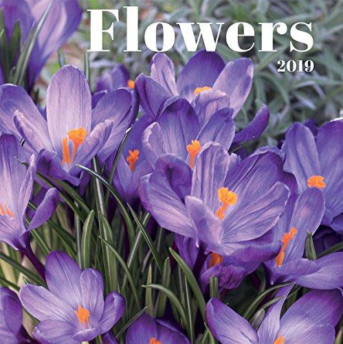 Turner Photo Flowers 2019 Wall Calendar (199989400770 Office Wall Calendar (19998940077)