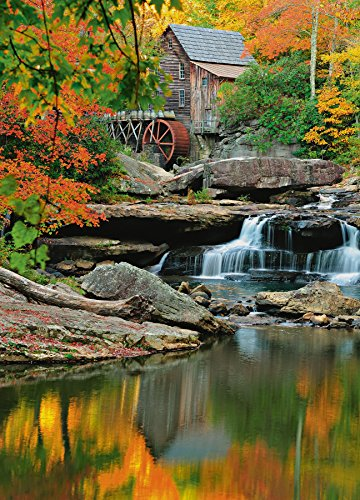 Ideal Décor DM437 Grist Mill 72-Inch-by-100-Inch 4-panel mural Review