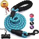 JBYAMUK 5 FT Strong Dog Lead with Comfortable Padded Handle and Highly Reflective Threads for Medium and Large Dogs (5-FT, Blue)