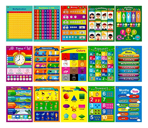 15 Laminated Educational Posters, Alphabet, Shapes, Colors, Numbers 1-100, Multiplication Table, Days of the Week, Months of the Year,Money,Emotions,Human Body,Time,Opposites,Seasons,Weather,Animals (Learning Poster)