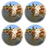 MSD Round Coasters IMAGE ID 20861100 Cows on a watering place