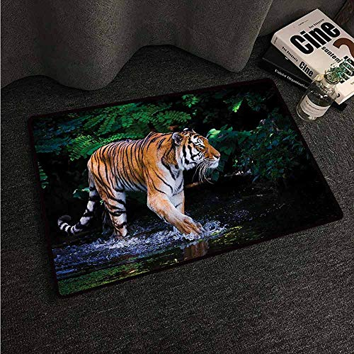 HCCJLCKS Modern Door mat Safari Tiger in Water Stream Hunting Danger Trees Tropical Pond Hiding Captive Non-Slip Door mat pad Machine can be Washed W35 xL59 Green Orange Brown