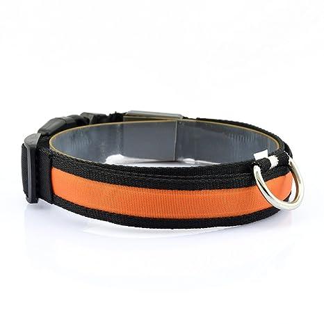 CY-Buity LED de seguridad perro Cuello Correa Cuerda Cinturón ...