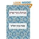 Masoes Binyomen Hashlishi: from the collected works of Mendele Mocher Sforim (Volume 5) (Yiddish Edition)