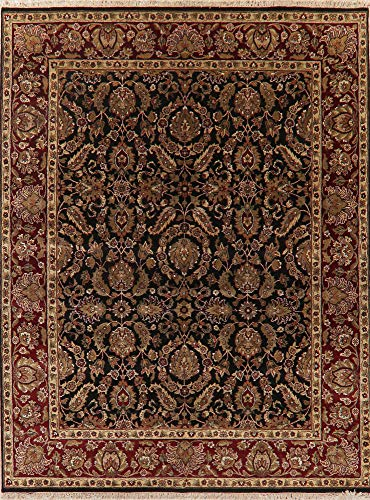 - Agra Oriental Area Rug Wool Hand-Knotted Floral New Carpet 8 X 10 Black