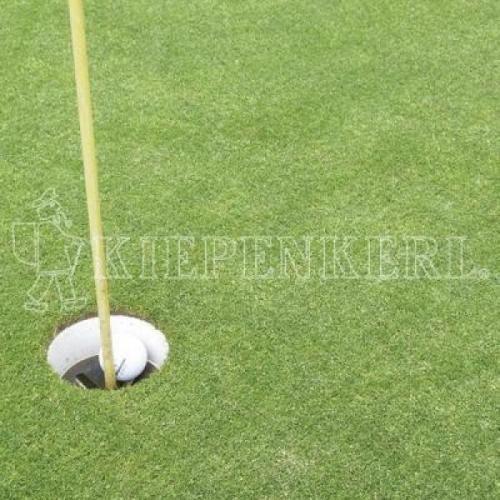 Kiepenkerl RSM 445 Golfrasen Masters Fairway 10kg, Rasensamen, Rasensaat