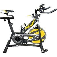Everlast Cyclette Sk-100 Grigio