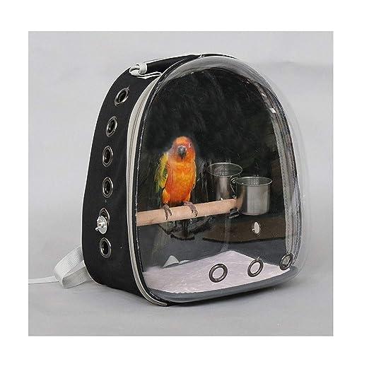 Grande Pajarera/Jaula Pájaros Compañías de Transporte de Aves ...
