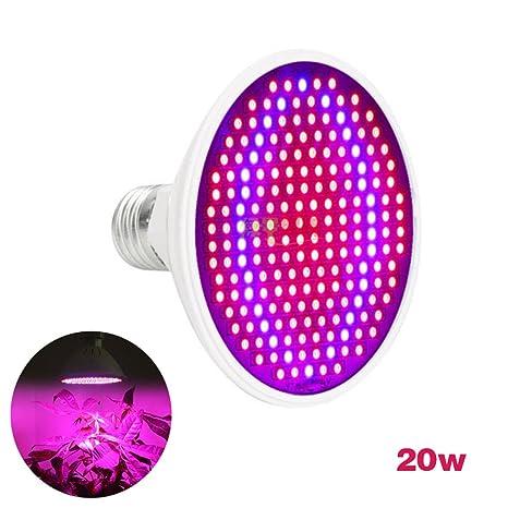 Luz de la planta - Dxlta LED Planta crece bombillas Escritorio flexible Titular Clip Flower Lámpara