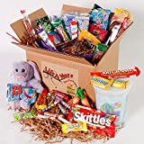 Easter Student/Military Care package - Student Food Basket - College Care Package - Gift for College Students