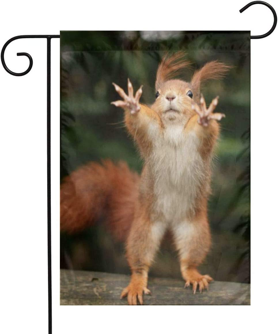 Squirrel Funny Animal Garden Flags Home Indoor & Outdoor Welcome Decorations,Waterproof Polyester Yard Decorative for Game Family Party Banner