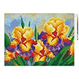 Olibay 5D DIY Full Diamond Painting Phalaenopsis Cross Stitch Crystals Embroidery Home Decor Craft 17.713.8inch