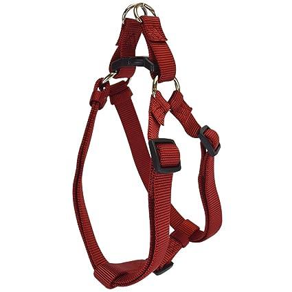 Amazon.com : Hamilton Adjustable Easy-On Step-In Style Dog Harness
