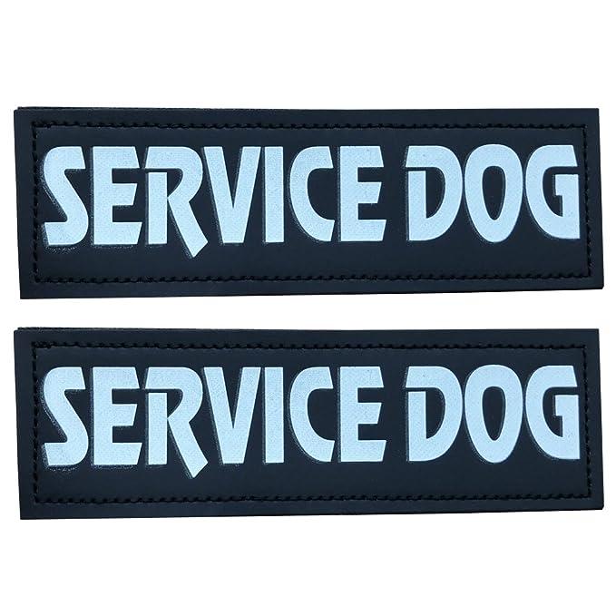 Amazon.com: sgoda perro de servicio parche para mascotas ...