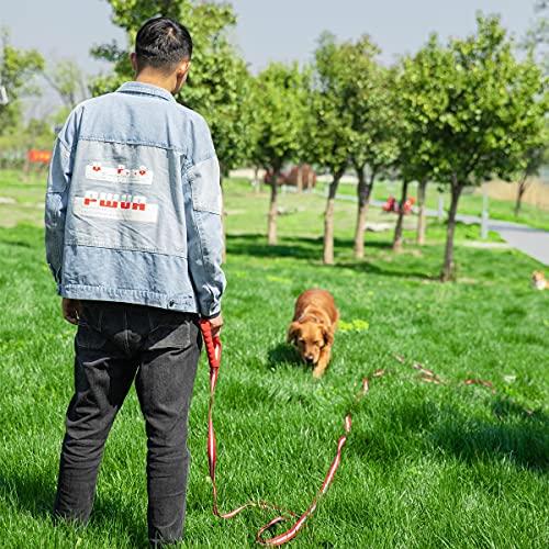 Dog Training Lead, Long Dog Leash Nylon Dog Recall Leads Long Training Dog Leash for Camping Tracking Training Obedience Backyard Play, Strong Lead Leash for Dog Comfortable Padded Handle (15m/50ft)