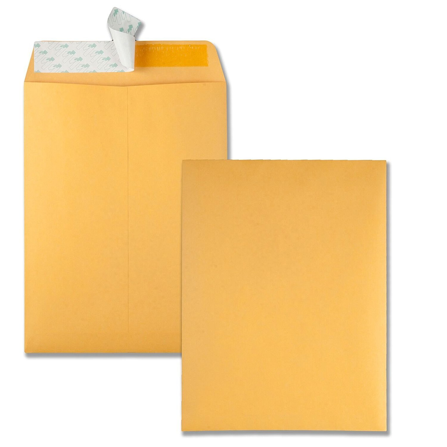 Quality Park 9 x 12 Catalog Envelopes with Self Seal Closure, 28 lb Brown Kraft, Great Option for Mailing, Storage and Organizing, (44562) (4 X Pack of 100)