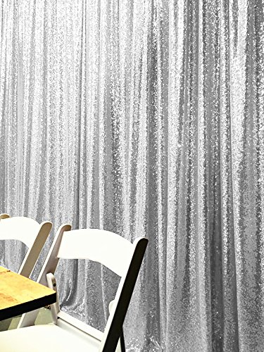4FTX6FT Silver Shimmer Photography Backdrop