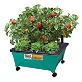 24-1/2 in. x 20-1/8 in. Patio Garden Kit with Watering System and Casters, Kid-Themed