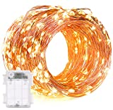 DecorNova 60 LED IP44 Waterproof Copper Wire String Lights with Timer and 3AA Battery Case - 19.7-Feet - Warm White (Set of 1)