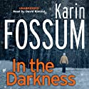 In the Darkness Audiobook by Karin Fossum Narrated by David Rintoul