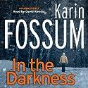 In the Darkness Hörbuch von Karin Fossum Gesprochen von: David Rintoul
