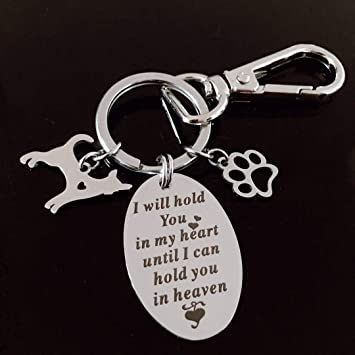 Amazon.com: Llavero conmemorativo para mascotas, regalo ...