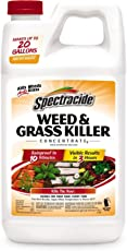 Spectracide Weed & Grass Killer Concentrate2 (HG-56201)
