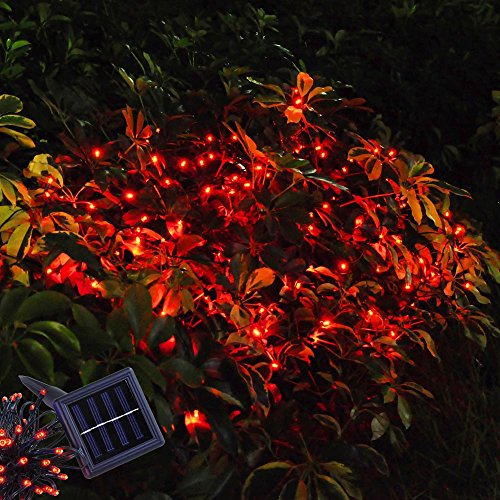 Powered String Lighting Waterproof Outdoor