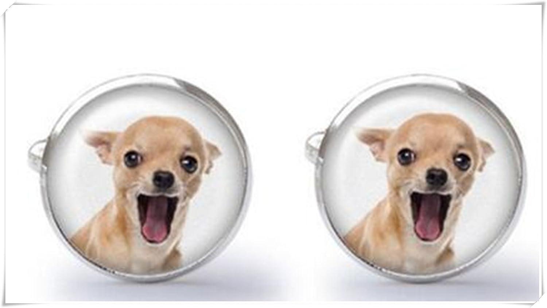 Gemelos de Chihuahua – Chihuahua regalo: Amazon.es: Joyería