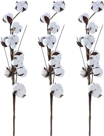 Volrcool - Arreglo floral de ramas de algodón para la decoración del hogar - 55 cm - 3 unidades: Amazon.es: Hogar
