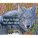 Auge in Auge mit dem Wolf: 20 Jahre unterwegs mit frei lebenden Wölfen