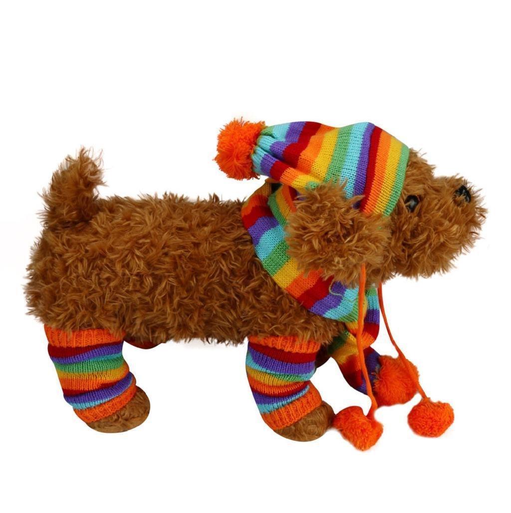 Sannysis Kit de Ropa Accesorio para Mascotas Calcetines Largos, Sombrero y Bufanda: Amazon.es: Deportes y aire libre