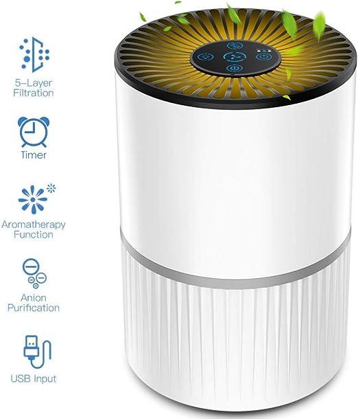 Purificador de Aire Alergia con Filtro HEPA y Carbón Activado, con ...