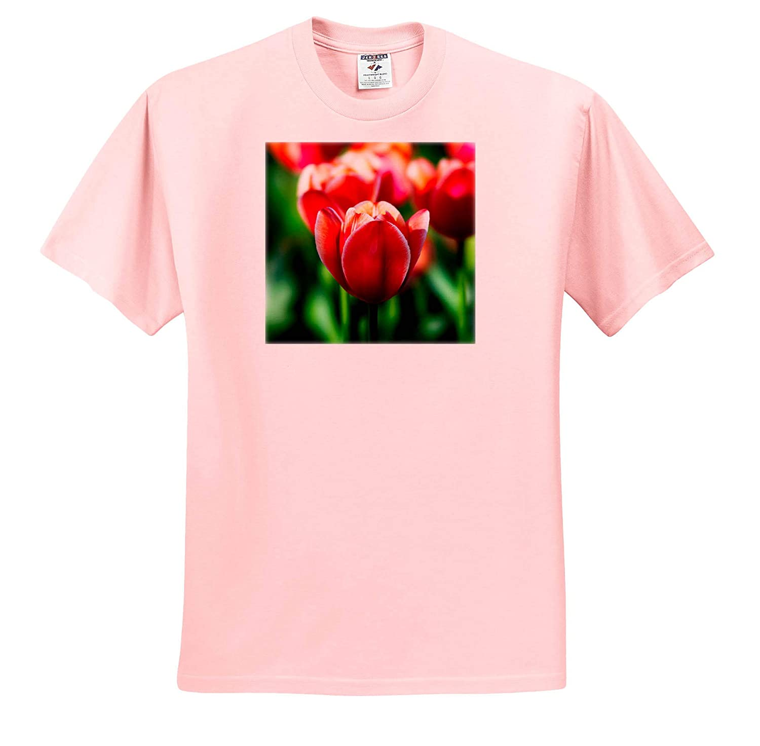 3dRose Alexis Photography Elegant Tulip Flowers on a Sunny Summer Day Red and Green Colors T-Shirts Flowers Tulips