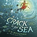 A Crack in the Sea Audiobook by H. M. Bouwman Narrated by Bahni Turpin, H. M. Bouwman