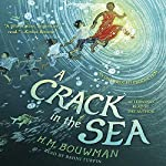 A Crack in the Sea | H. M. Bouwman