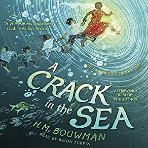 A Crack in the Sea Audiobook