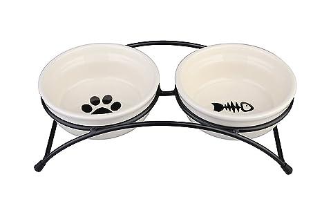 Amazoncom Janyoo Ceramic Cat Bowls Food Feeding Stand Elevated Dog