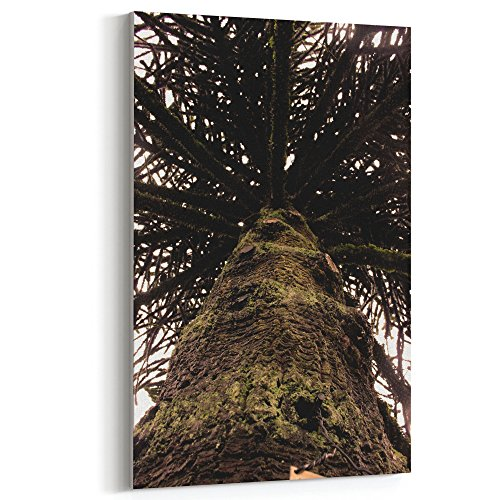 Plant - 12x18 Canvas Print Wall Art - Canvas Stretched Gallery Wrap Modern Picture Photography Artwork - Ready to Hang 12x18 Inch (7481-DBBB9) ()