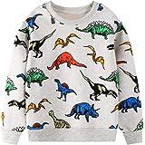 BTGIXSF Little Boys Cotton Crewneck Cartoon Long Sleeve Pullover Sweatshirts Tops