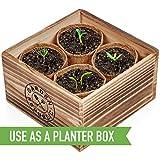 Indoor Garden Pepper Seed Starter Kit - 4 USDA