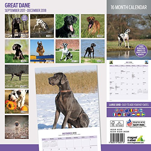Great Dane 2018 Traditional Wall Calendar Photo #2