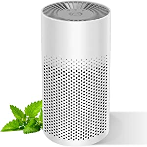 Mini-Air Purifier for Home Bedroom Office Desktop Pet room, Safety Mini Air Cleaner,3-in-1 True HEPA Mini Purifier for Children & Elder