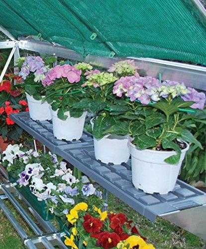 Palram Shelf Kit for Greenhouses by Palram (Image #1)