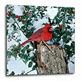 3dRose Danita Delimont - Cardinal - Northern Cardinal male on stump near China Holly in winter, IL - 10x10 Wall Clock (dpp_250901_1)