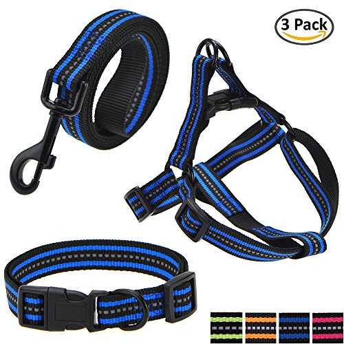 (Mile High Life Night Reflective Double Band Nylon Small Animal Pet Dog (Blue 3 Pack Collar Leash Harness, Large Neck 16